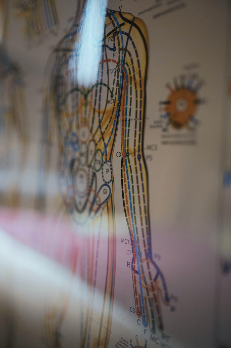 A human body graph showcases science behind healthy breathing